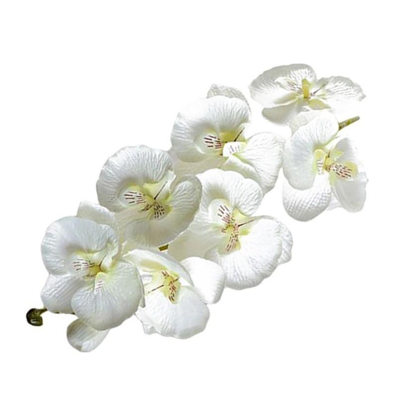 FillMoon 30pcs Beautiful DIY Crafts Natural Plants Home Decor Dried Flowers Mini Daisy Small Star Floral Bouquets Dark Purple