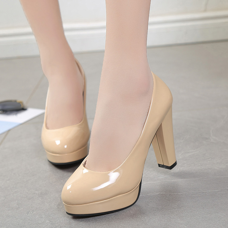 Details about  /Plus Size 34-47 Womens Pointed Toe Dating Work Pumps High Heel Office Lady Shoes