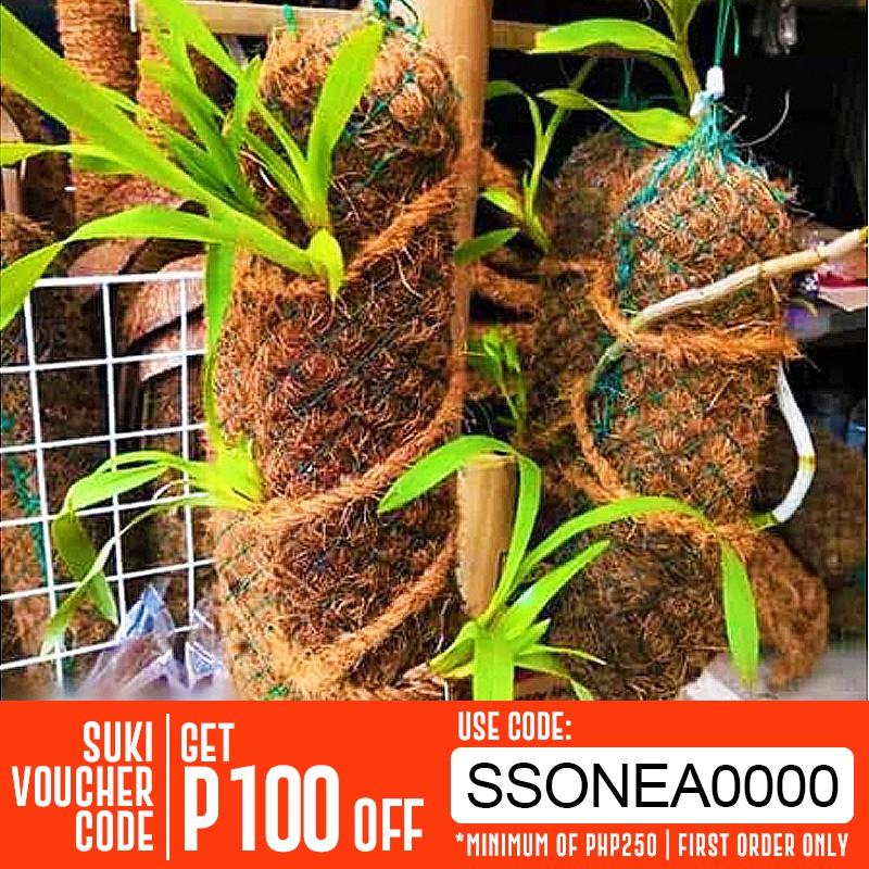 Coconut Husk fiber,Chips for Orchids flowers-200g