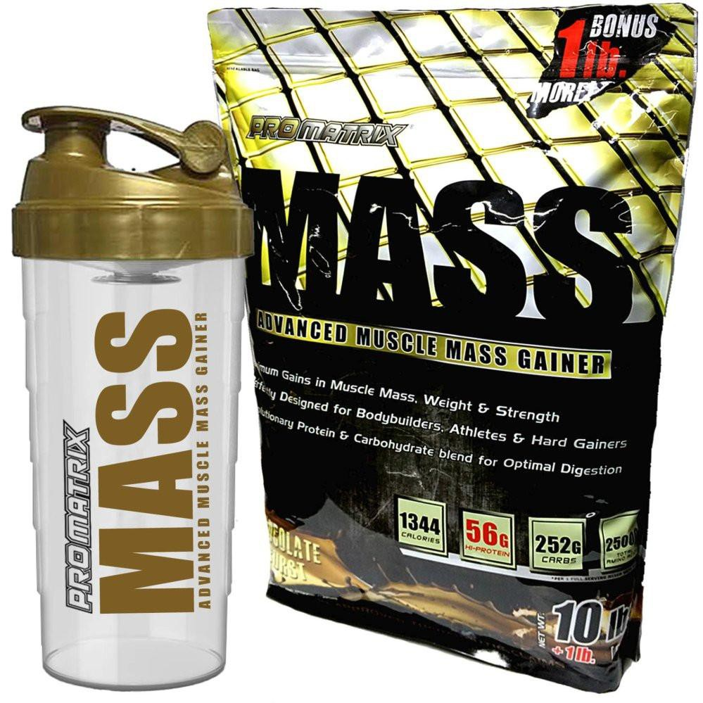 Elite Labs Mass Gainer 20 Lbs Shopee Philippines Muscle