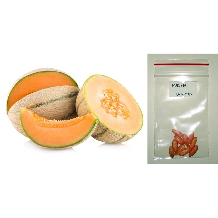 Melon Cantaloupe Fruit Seeds Shopee Philippines Searching for cantaloupe knives at discounted prices? melon cantaloupe fruit seeds