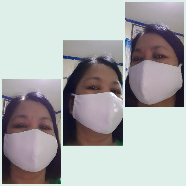 Home Manufactured Reusable Contoured Dust Mask