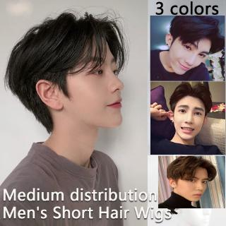 Hair Wigs For Men Men S Hair Topper Wig Toupee Clip Hairpiece Top Wig For Daily Wear Balding Natural Shopee Philippines