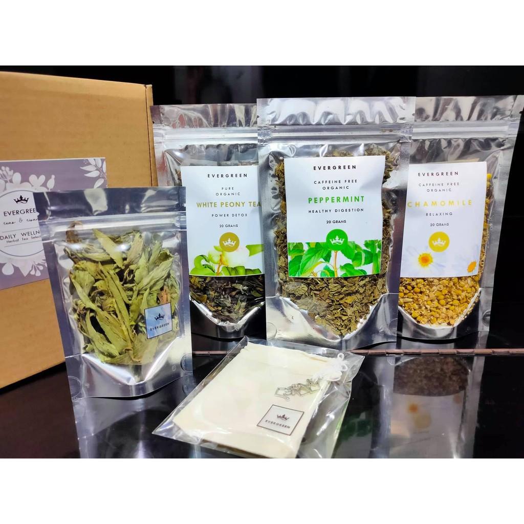 Tea Gift Box Daily Wellness Tea Set Shopee Philippines