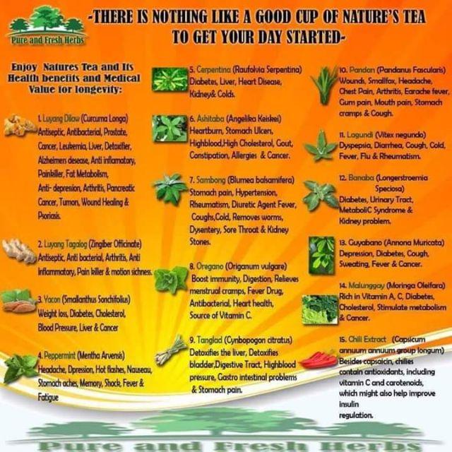 Nature S Tea Turmeric And Yacoon 400g Shopee Philippines