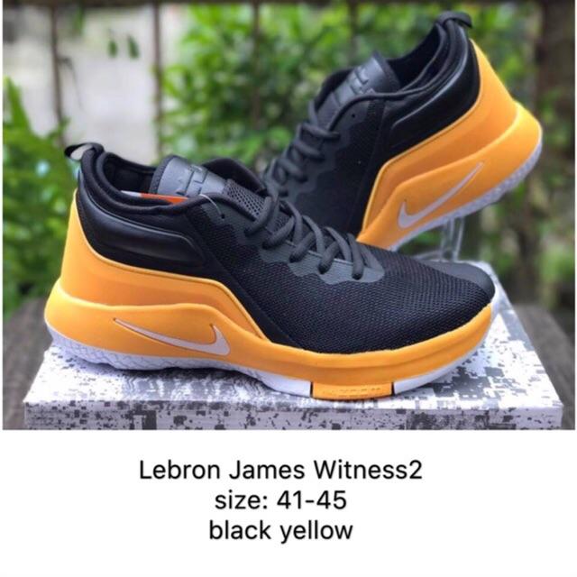 669643837d043 Nike Lebron James basketball shoes