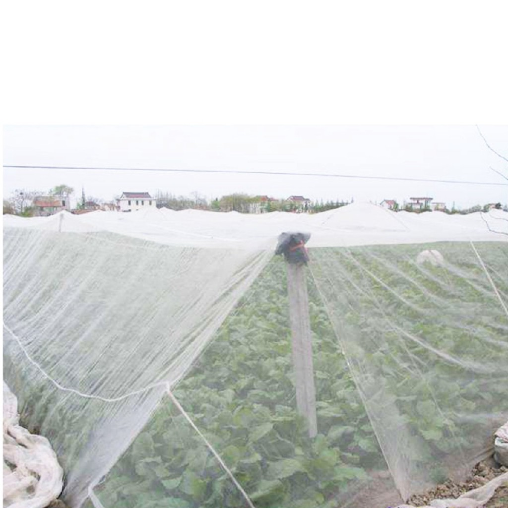 Garden Bug Insect Netting Protect Plants Fruits Flowers 10x15ft Mosquito