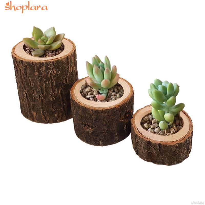10PCS Stump Tea Light Candle Holder succulentes pot Mariage Décorations 4.2 cm