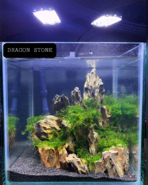 Dragon Stones 1kilo For Aquascaping Aquarium Garden Paludarium Tetarium Shopee Philippines