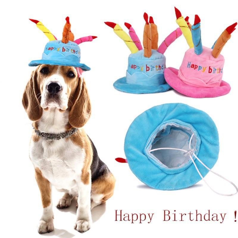 6ce7da12b0e Pet Cat Dog Happy Birthday Hat Cake Amp Candles Design Party ...