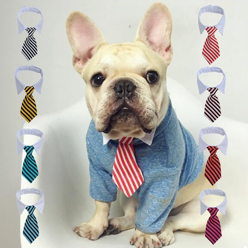 1Pc Pet Dog New 2019 Charming Colorful 3 Sizes S-L Nylon Solid Collar Necklace