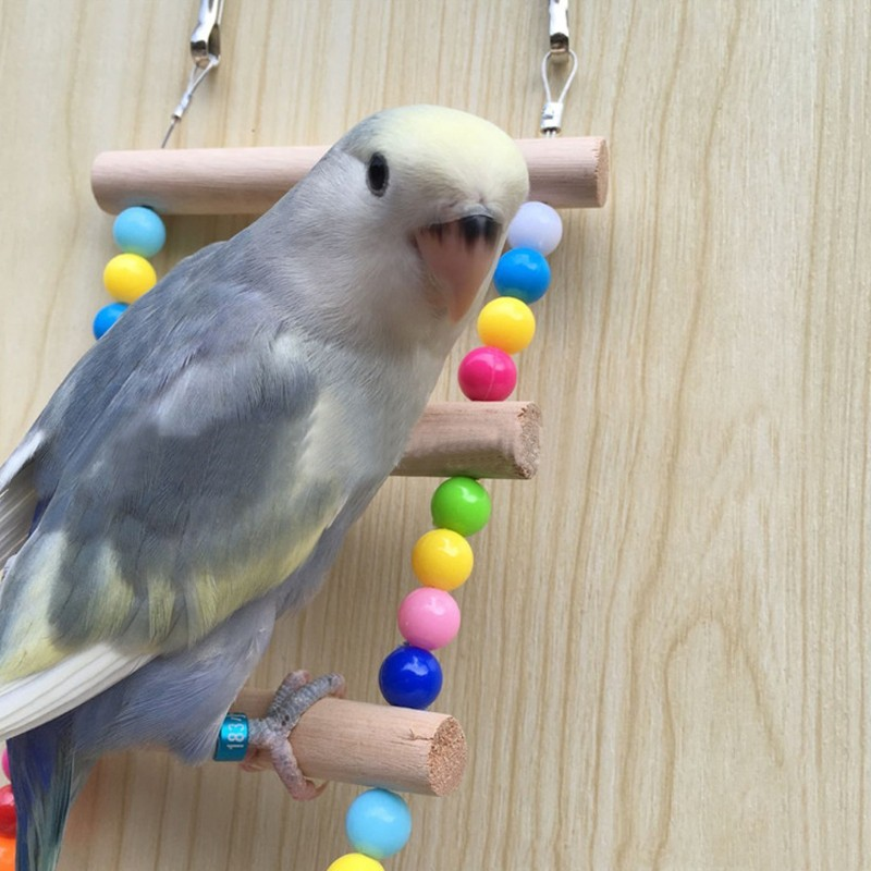 Birds Pets Parrots Ladders Climbing Toy Hanging Colorful Balls With Natural  Wood   Shopee Philippines