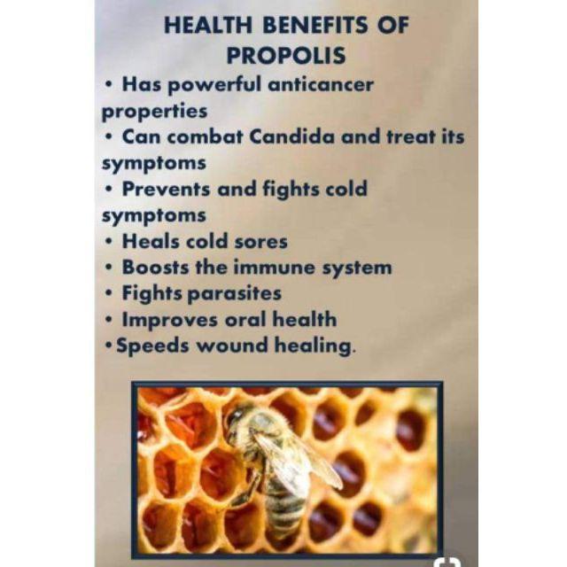 MQT Bee Propolis Organic Ointment (30 or 40 grams) | Shopee
