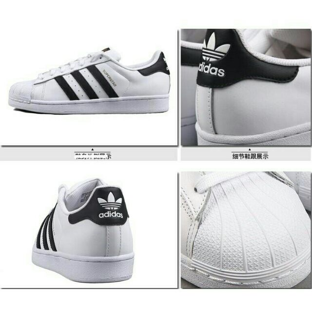Adidas Superstar Skateboard Women And