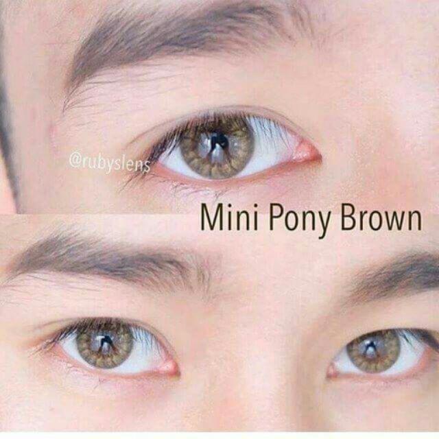 Mini Pony Brown Sweety Plus Contact lens