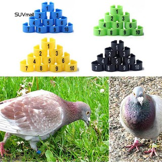 SUV_100Pcs Bird Poultry Parrot Chicks Plastic 1-100 Numbered