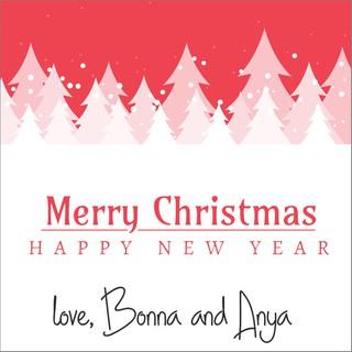Christmas Name Tags.Customized Christmas Gift Tags Xgt 030