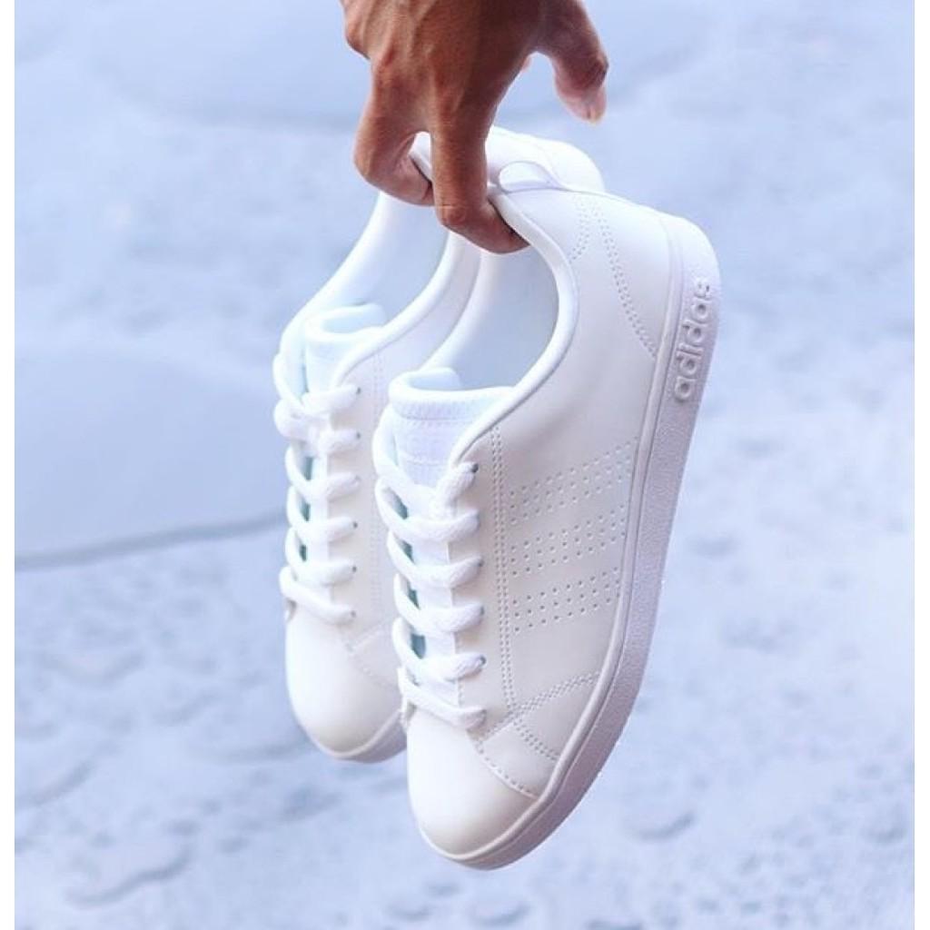 adidas neo clean