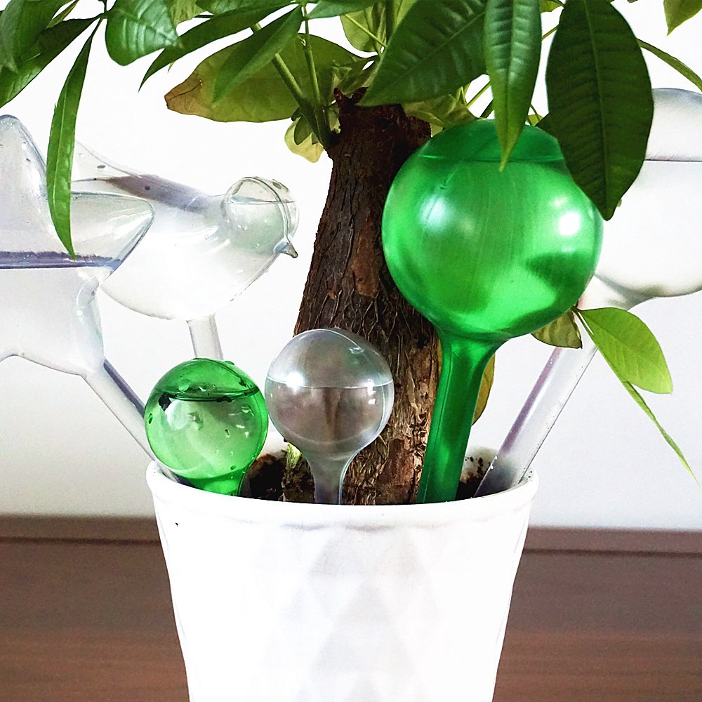 Image result for Plant watering globes 1000 x 1000