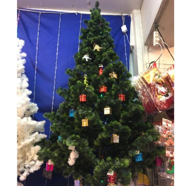 15 Ft Christmas Tree.15ft Shasta Christmas Tree Washable 2ft 3ft 4ft 5ft 6ft 7ft 8ft 10ft 12ft 15ft