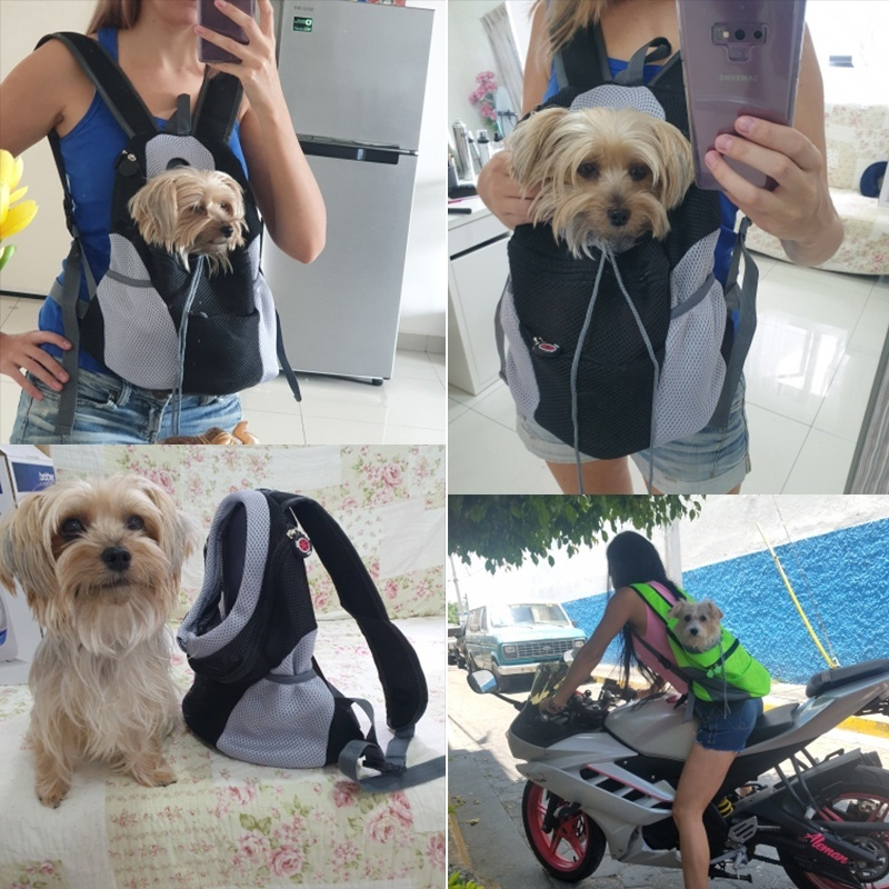 Pet Dog Carrier Backpack Outdoor Nylon Bag Double Shoulder Portable Travel  Mesh Pet Front Bag Carrier Drop Shipping | Shopee Philippines