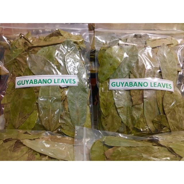 Guyabano leaves naturally air dried