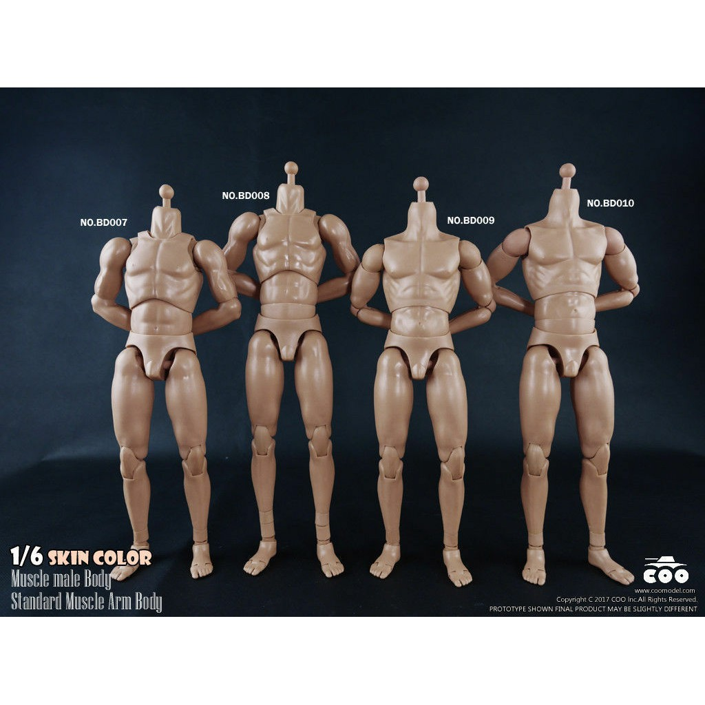 1:6 COOMODEL Standard Muscle Male High Action Body Figure BD010 W Skin Color