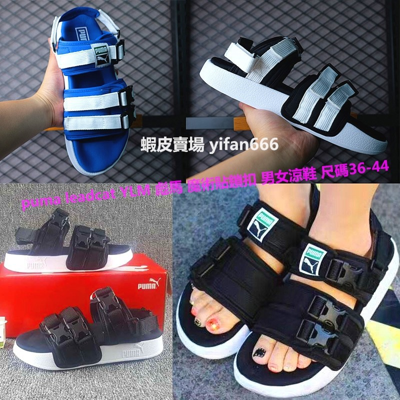 4e0740766342 Couples shoes puma leadcat YLM Puma Velcro lock men and wome ...