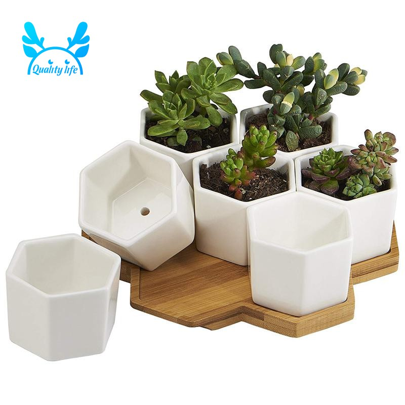 Plant Care Supplies Soil Accessories Seed Herb Planter Window Sill Box Plant Pot Indoor Outdoor Cute Resin House Kisetsu System Co Jp