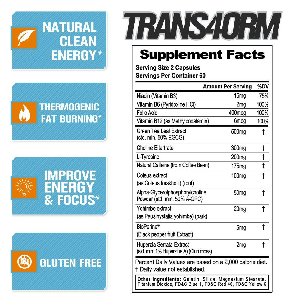 EVL Trans4orm Thermogenic Energizer Exp