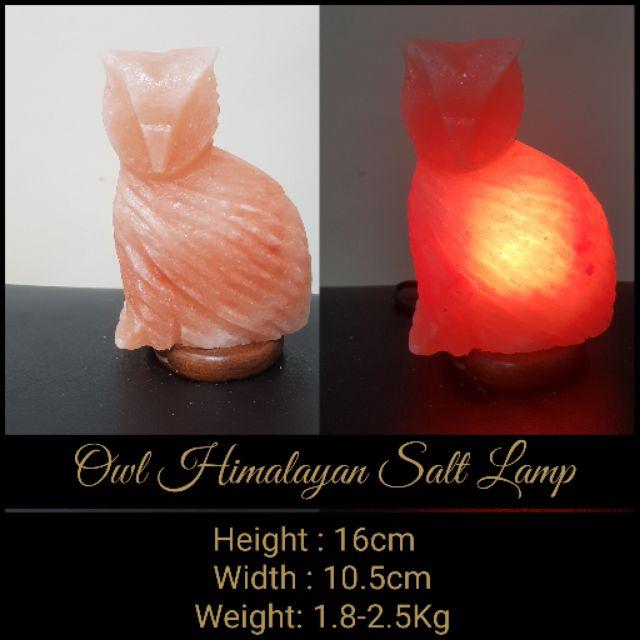 Sale! PAKISTAN HIMALAYAN OWL SALT LAMP 100% AUTHENTIC