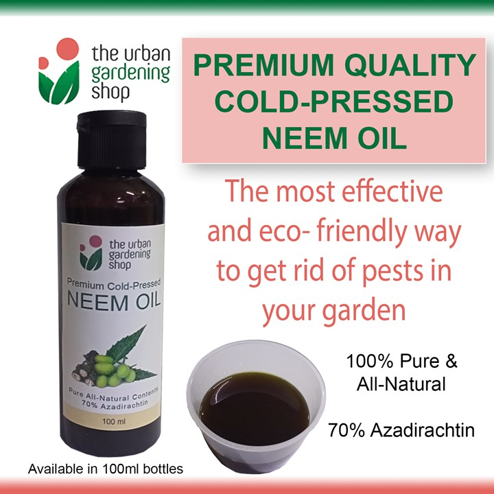 COLD- PRESSED NEEM OIL An Eco-friendly Way To Fight Garden