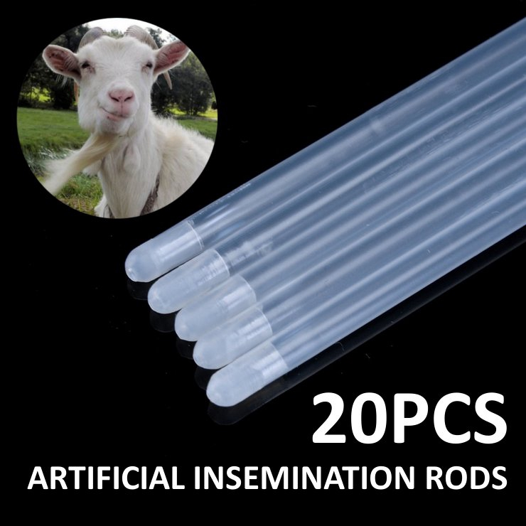 Artificial Insemination Tool for Dog Goat Sheep Rabbit