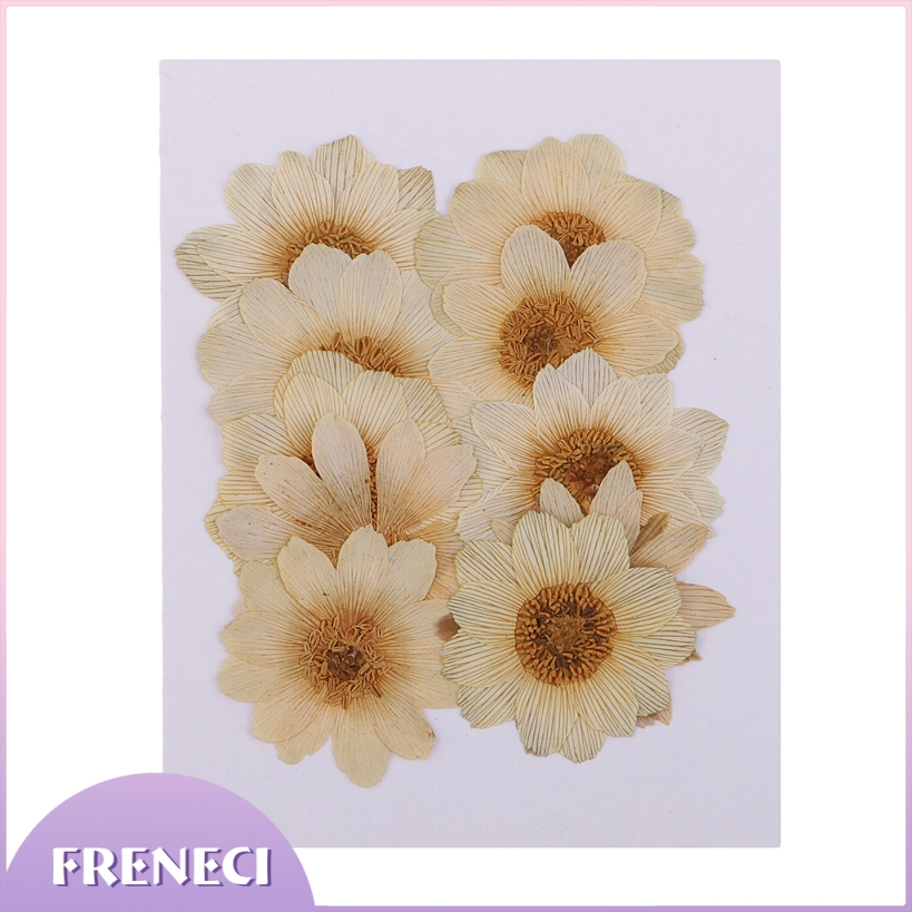 dailymall 10 Pieces Dried Real Flowers Pressed Ice Flowers DIY Arts Crafts Supplies