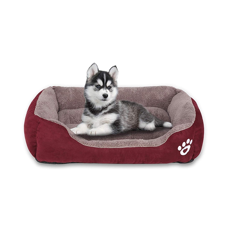 Paw-fin Pet Bed
