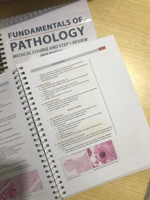 Fundamentals of Pathology (Pathoma) | Shopee Philippines