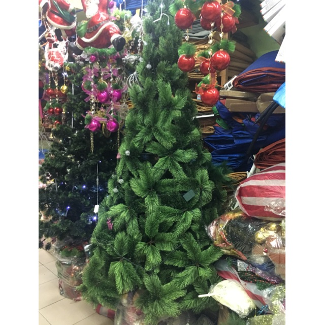 promo code e4dbe 026fb Middle Pine Christmas Tree 5ft 6ft 7ft