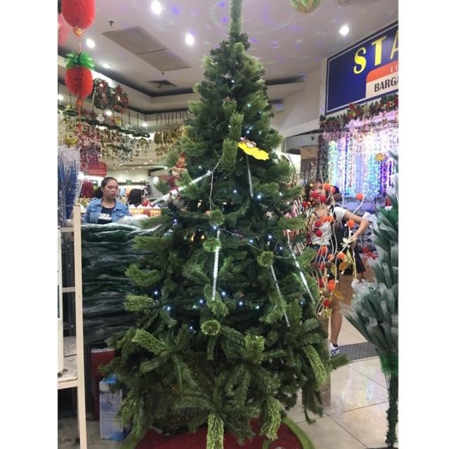 15 Ft Christmas Tree.Sugar Vinyl Hook Type Christmas Tree 5f 6ft 7ft 8ft 10ft 12ft 15ft
