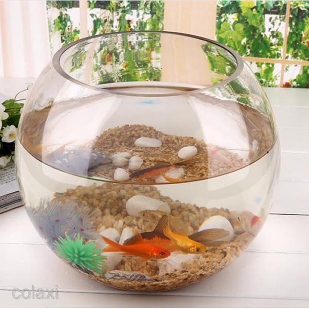 2020 New Modern Round Ball Shaped Glass Bowl Mini Aquarium Fish Tank Fairy Garden Diy Terrarium Container Shopee Philippines