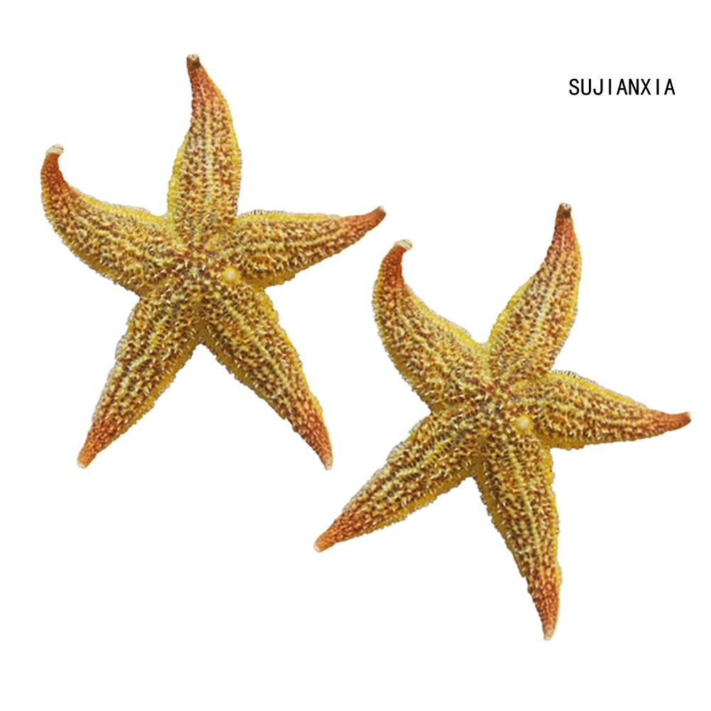 SEASTAR ORNAMENT gift handmade Starfish hand cut shaped ceramic marine sea ocean creature vacation souvenir memories one of a kind