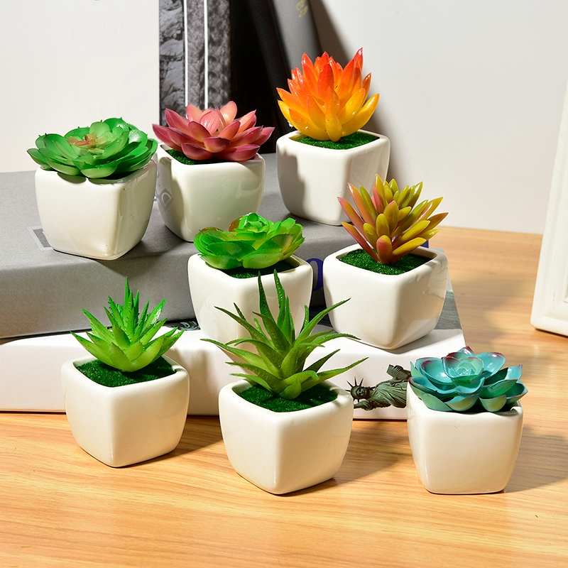 Small Green Succulent Artificial House Plants Ceram ...