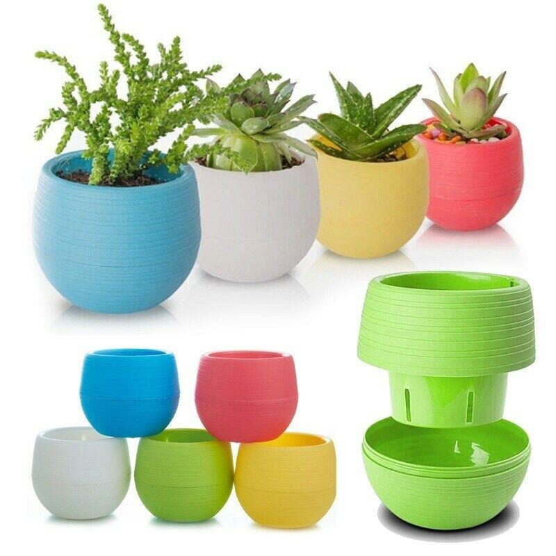 Buy 1 Get 1 Mini Colourful Round Plastic Plant Flower Pot Garden Home Office Decor Planter Desktop Shopee Philippines