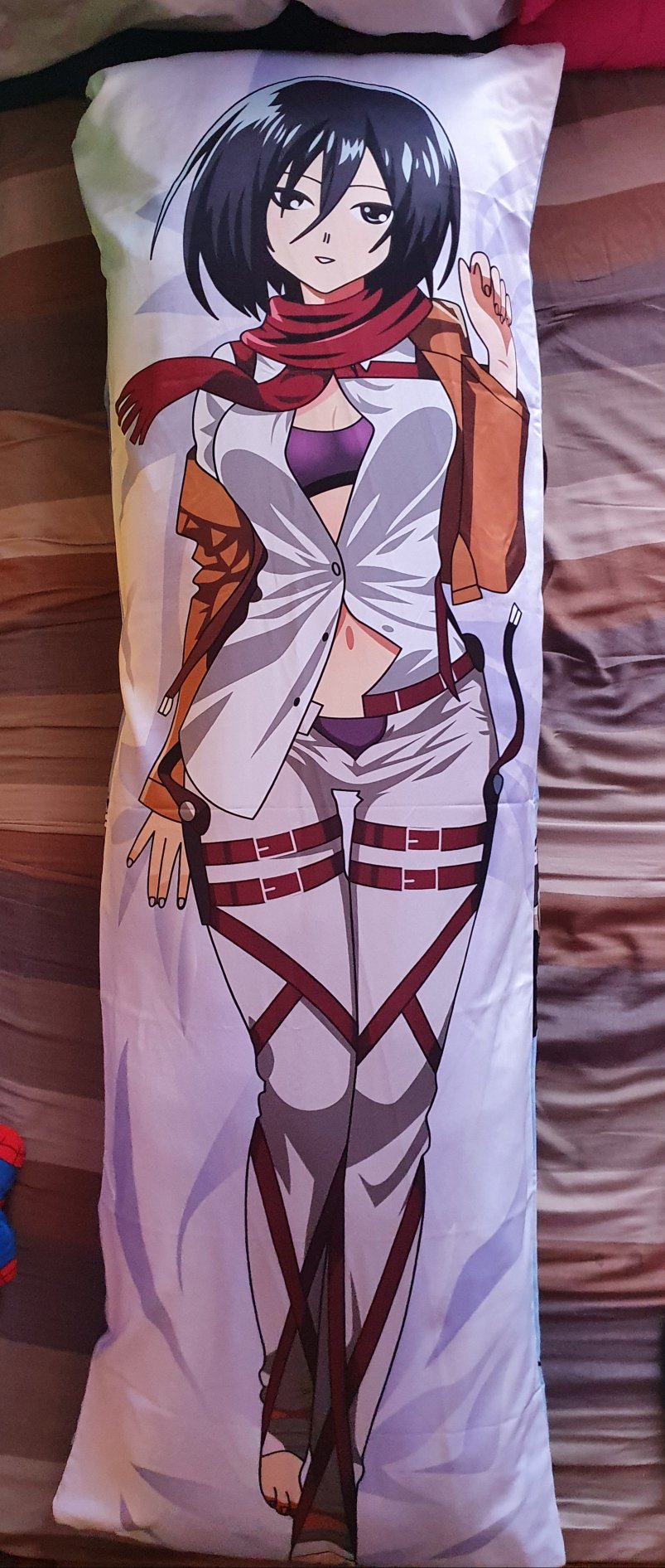 Attack On Titan Mikasa Pillow