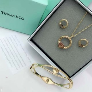 36462fa86 🍀Tiffany &Co Earing with necklace with bangles set 🍀