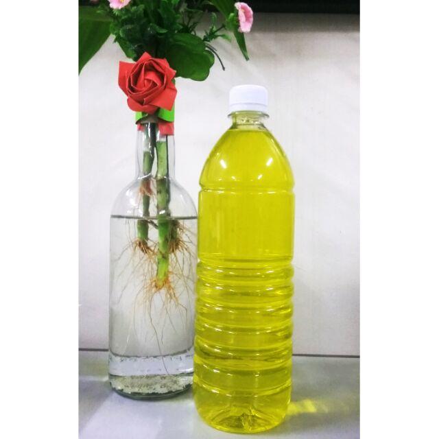 Homemade Dishwashing Liquid 1L | Shopee
