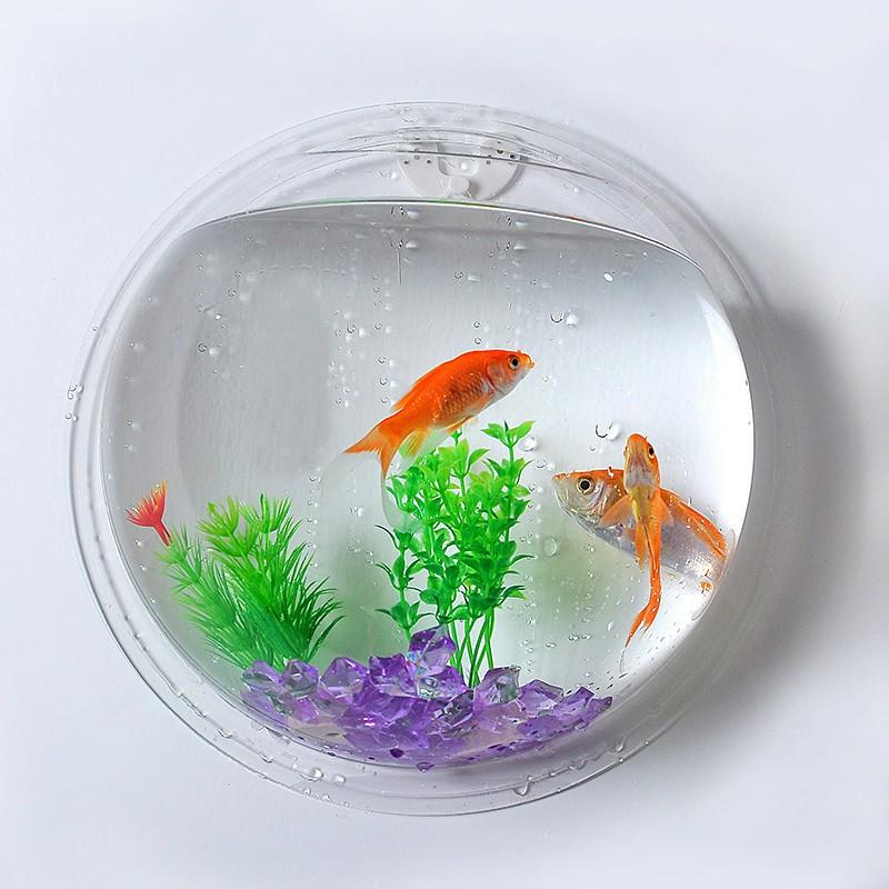 Wall Hanging Mount Bubble Aquarium Bowl Fish Tank Aquarium